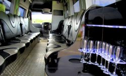 16 passenger Party Bus in Silver (interior) W1