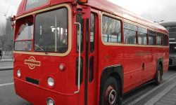AEC Single Deck Bus in Red 3