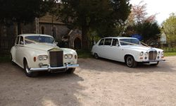 Rolls Royce Silver Cloud and Daimler Limousine together