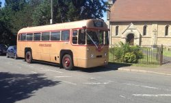 39 passenger AEC Single Deck RF Bus in Gold 2