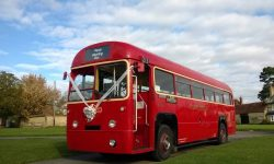 Traditional 39 passenger AEC Single Deck RF Bus in London Transport Red - 2